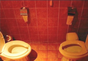 Unique and different toilets of the world